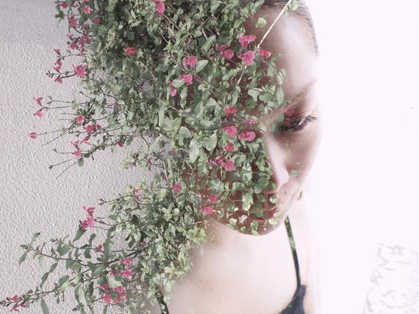 30 tác phẩm của nhiếp ảnh gia Miki Takahashi