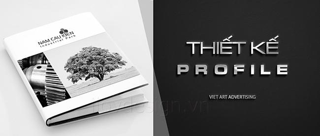 Hồ sơ năng lực - Profile Nam Cầu Kiền