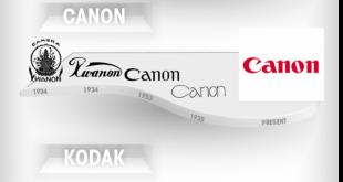 sự phát triển của logo